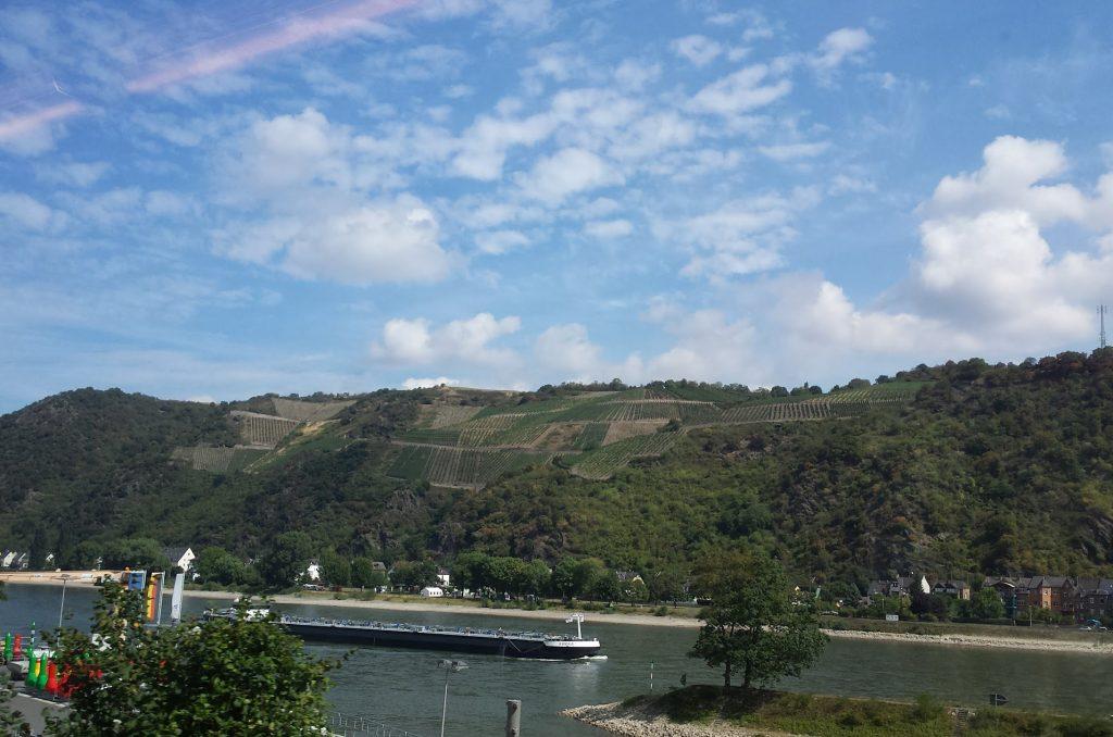 Banks of the Rhine 20150819